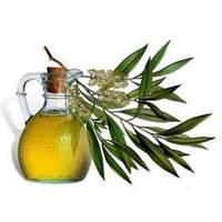 Eucalyptus Food Oil - целебное масло, 1 литр