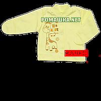 Детская кофточка р. 62 с начесом и царапками демисезонная ткань ФУТЕР 100% хлопок ТМ Алекс 3222 Желтый