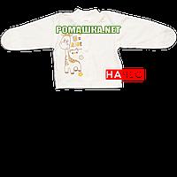 Детская кофточка р. 56 с начесом и царапками демисезонная ткань ФУТЕР 100% хлопок ТМ Алекс 3222 Бежевый