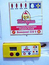 Инкубатор автоматический для яиц Теплуша на 63 яйца , фото 3