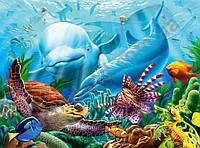 С-200627, Жизнь океана, 2000 эл.