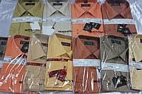 Рубашка мужская классическая цветная в ассортименте