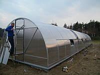 Теплица из поликарбоната 4х20х2.3 м. (поликарбонат 4 мм. в комплекте).