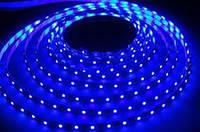 Cветодиодная лента SMD 2835 5 метров синий свет