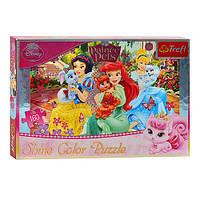 """Пазлы 30007 Trefl """"Shine, Disney, Принцессы"""", 160 деталей"""
