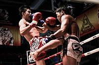 Индивидуальные тренировки по тайскаму боксу (Муай-тай)