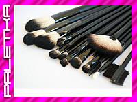 Проф. набор кистей для макияжа 18 штук #12