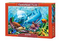 Пазлы Жизнь океана 2000 элементов Castorland