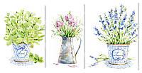 """Модульная картина """"Цветы в горшках"""" 108x53 см"""