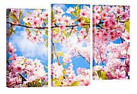 "Модульная картина ""Ветка сакуры"" 116x76 см"
