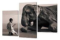 """Модульная картина """"Мальчик и слон"""" 284"""