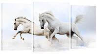 """Модульная картина """"Бегущие лошади"""" 322"""