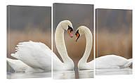 """Модульная картина """"Лебеди на пруду"""" 319"""