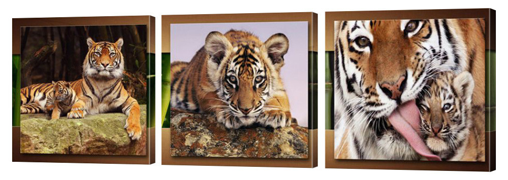 """Модульная картина """"Тигры"""" 208"""