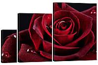 """Модульная картина """"Роза 3"""" 152x99 см"""