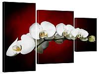 """Модульная картина """"Королевская орхидея"""" 133x99 см"""
