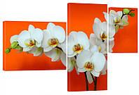 """Модульная картина """"Орхидея на оранжевом"""" 150x99 см"""