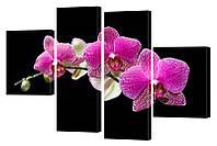 """Модульная картина """"Орхидея на черном"""" 155x103 см"""