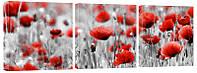 """Модульная картина """"Маковое поле"""" 160х53 см"""