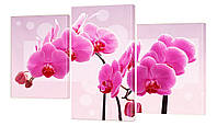 """Модульная картина """"Орхидея розовая"""" 160x99 см"""