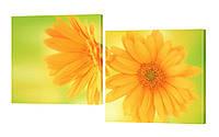 """Модульная картина """"Солнечные цветы"""" 106x70 см"""