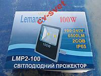 Прожектор 100w прожектор 50w х2 серый LMP2-100