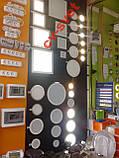 Накладная розетка с крышкой Магнолия LMR2005, фото 3