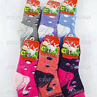Детские ангоровые носки с махрой внутри Vesna 3790 29-35. В упаковке 12 пар