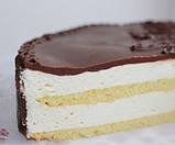 Какао-порошок обезжиренный,  1%, безДОПовый, 250г, фото 5