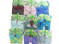 Колготки махровые для девочки, размеры 56/62(2),68/74(3),80/86(3),92/98(3) месяцев, арт. 210-м