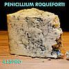 Закваска Penicillium Roqueforti ЧИЗПРО 100 (10шт. Х 10л) для сыра с голубой плесенью