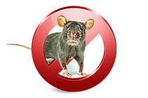 Средства от грызунов (родентициды) - от мышей и крыс