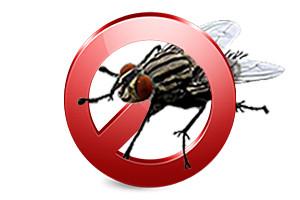 Липкие ленты и средства от мух