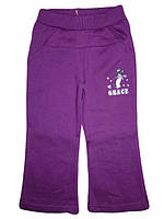Спортивные брюки с начесом для девочек оптом,  Active Sports, 86-116 рр., арт. WT1380