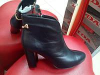 Демисезонные женские ботинки  на каблуке из   натуральной кожи ROMAX  38 размер., фото 1