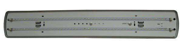 Светильник ДПП20 600 5000К LED