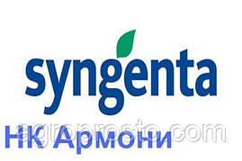 Гибрид подсолнечника Сингента НК Армони (Syngenta)