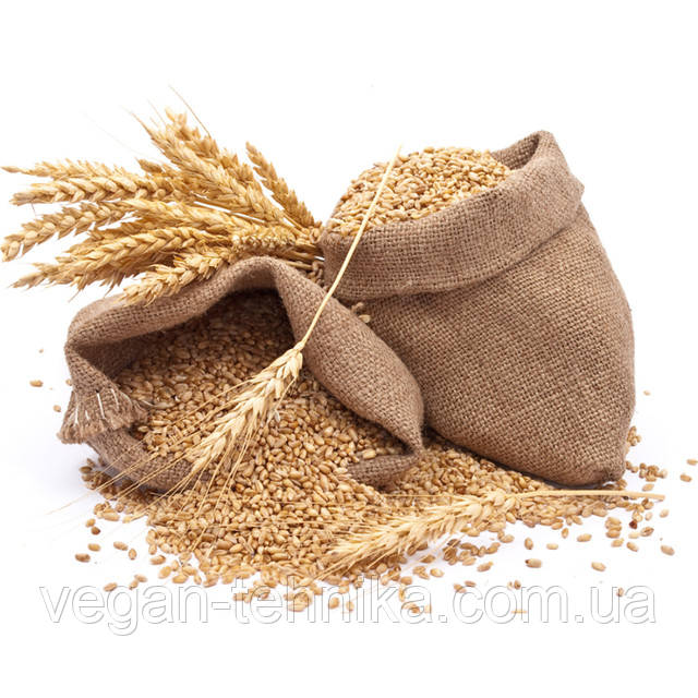 Зерновые культуры органические - злаковые, бобовые, масличные