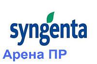 Гибрид подсолнечника Сингента Арена ПР (Syngenta)
