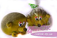 Травянчик Ёжик-2