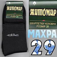Носки мужские махровые х/б Житомир Elite черные 29р Украина НМЗ-112