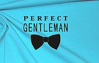 Термотрансфер ТТ-160 Perfect gentleman