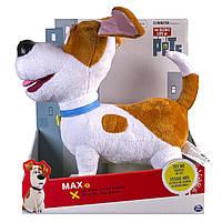 Макс, говорящая собачка из м/ф Тайная жизнь домашних животных