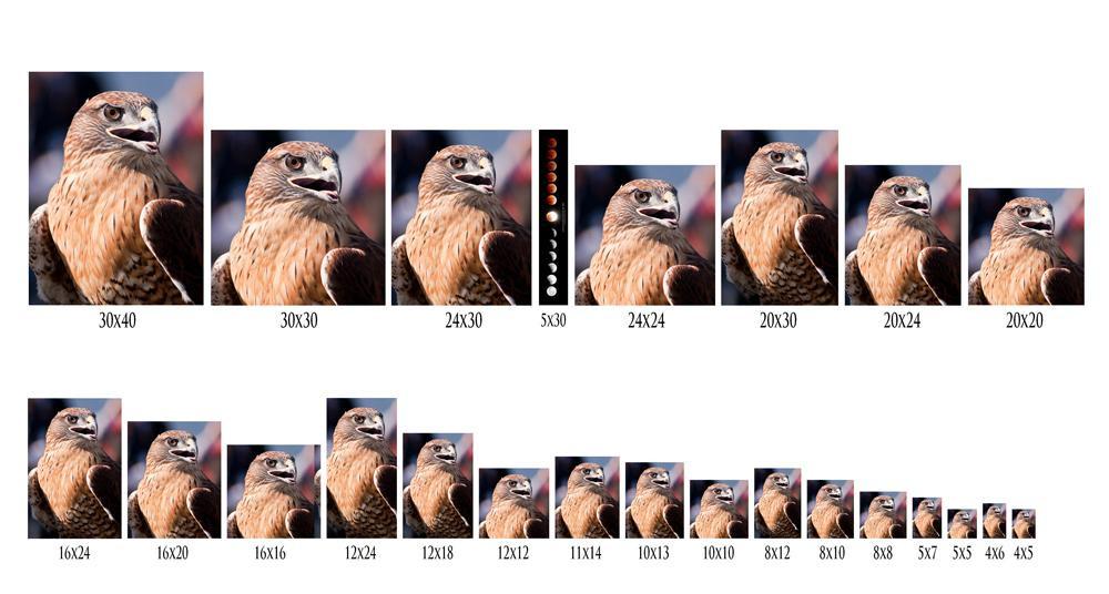 Размер изображения какие бывают