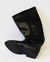 Зимние кожаные сапоги с отделкой Olli 48-2450, фото 3
