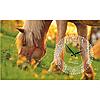Часы настенные на холсте Лошади 50*30см Your Time 06-205
