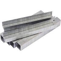 Скобы Сталь для строительного степлера 62121 Т50 6х10.6 мм (40500) (1000 шт./уп.)