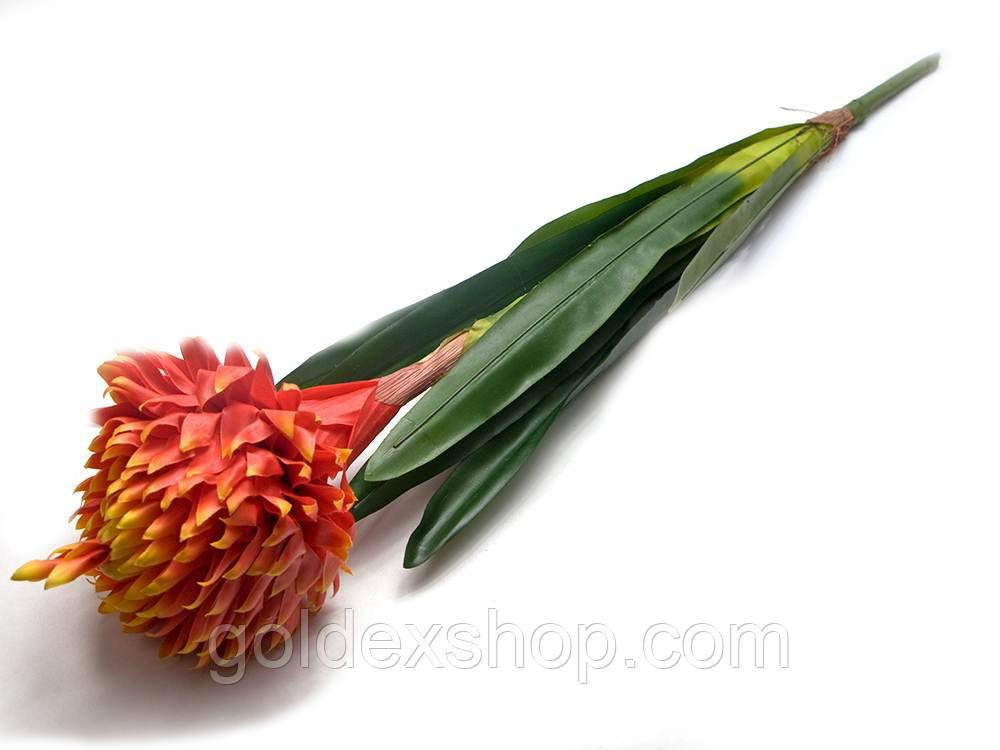 """Цветок """"Гузмания"""" (79 см)"""