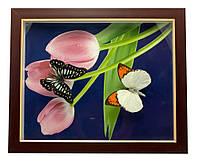 Бабочки в рамке (28х23х2,5 см)