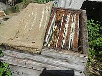 Прополисный холстик, 50х50 см.